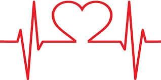 dynamique du coeur